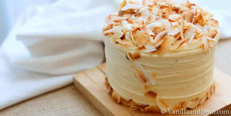 A layered cake with icing and toasted coconut toppings on top.
