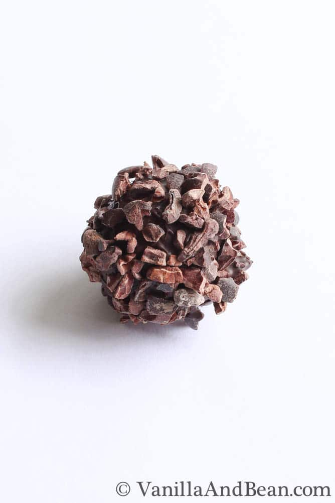A bon bon candy coated with chopped chocolates