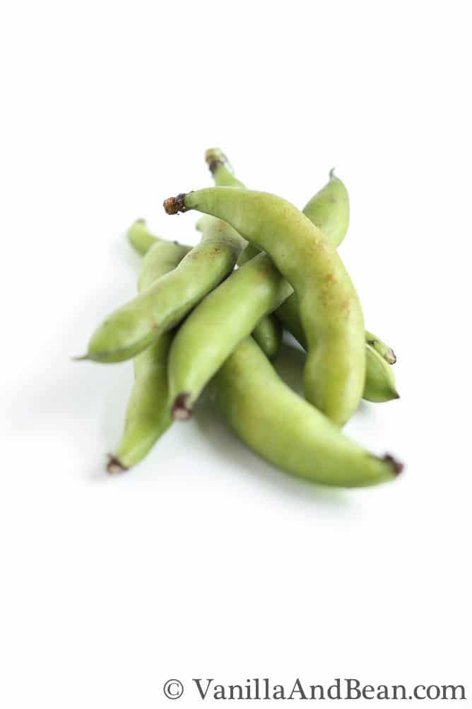 A few pieces of fava beans.