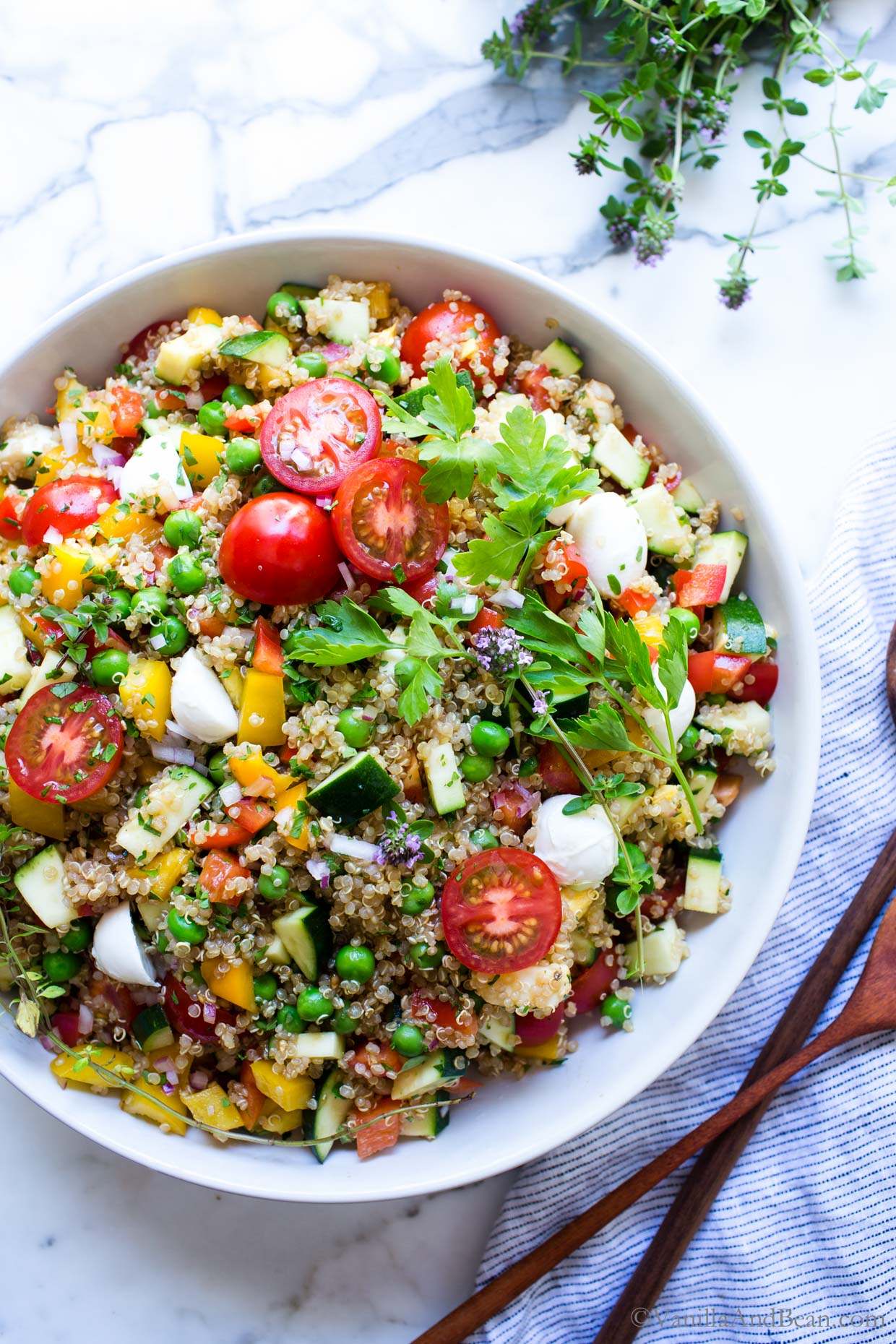 Summer Quinoa Vegetable Salad With Fresh Mozzarella Vanilla And Bean