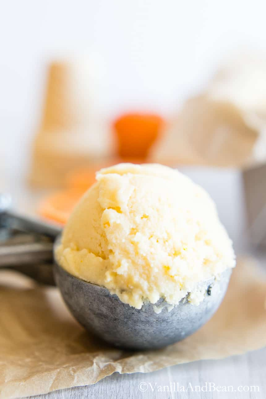 Orange Sherbet in an ice cream scooper.