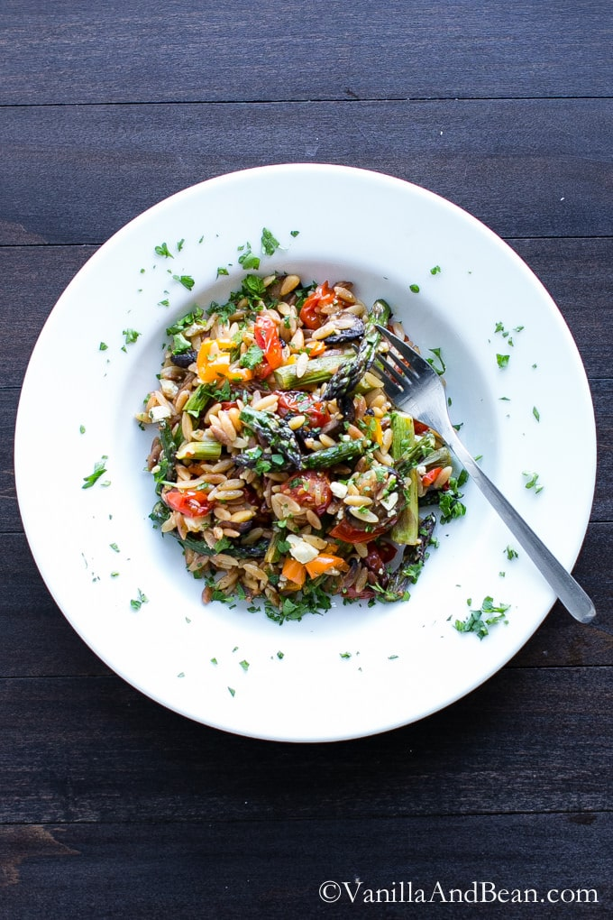 Lemon Garlic Orzo with Roasted Vegetables is packed with texture and flavor. A delicious and easy orzo pasta salad recipe served warm or chilled and makes fabulous leftovers or addition to a picnic