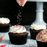Double Chocolate Devil's Food Cupcakes with Vanilla Bean Buttercream
