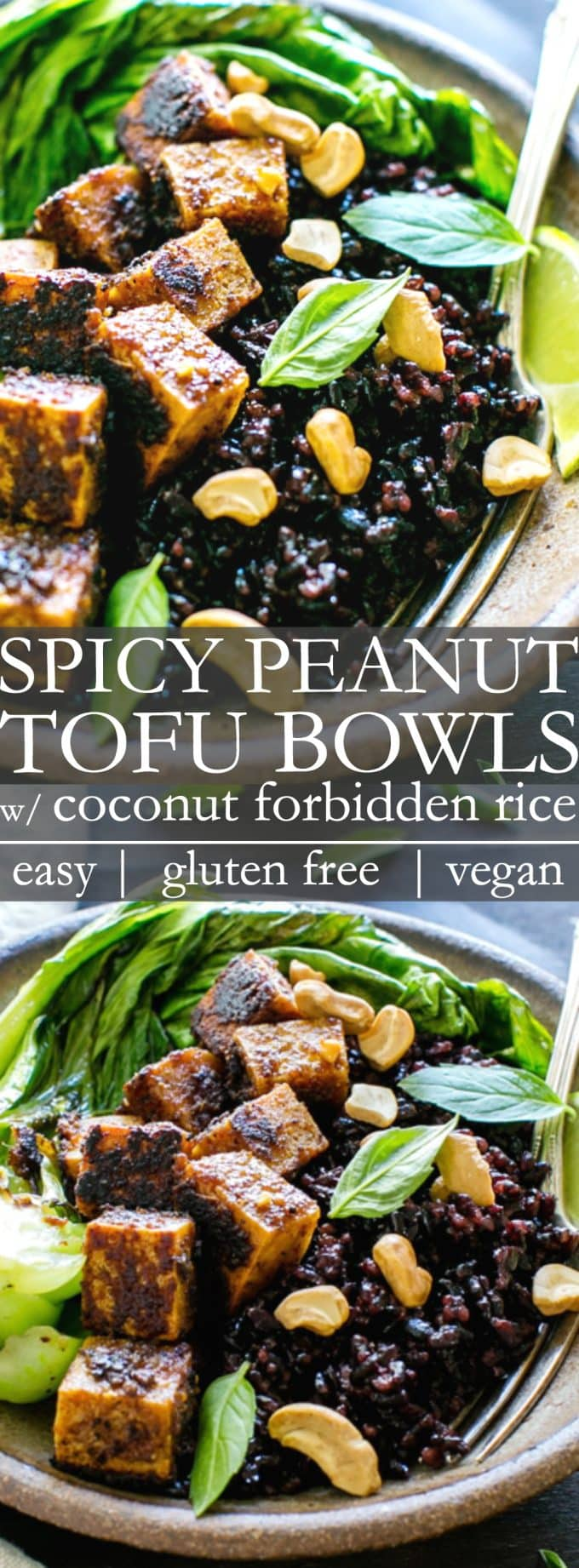 Spicy Peanut Tofu Bowl recipe with Coconut Forbidden Rice