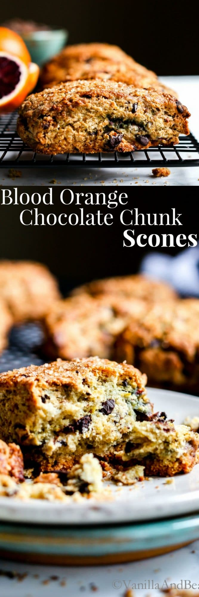 Blood Orange Chocolate Chunk Scones - Vanilla And Bean