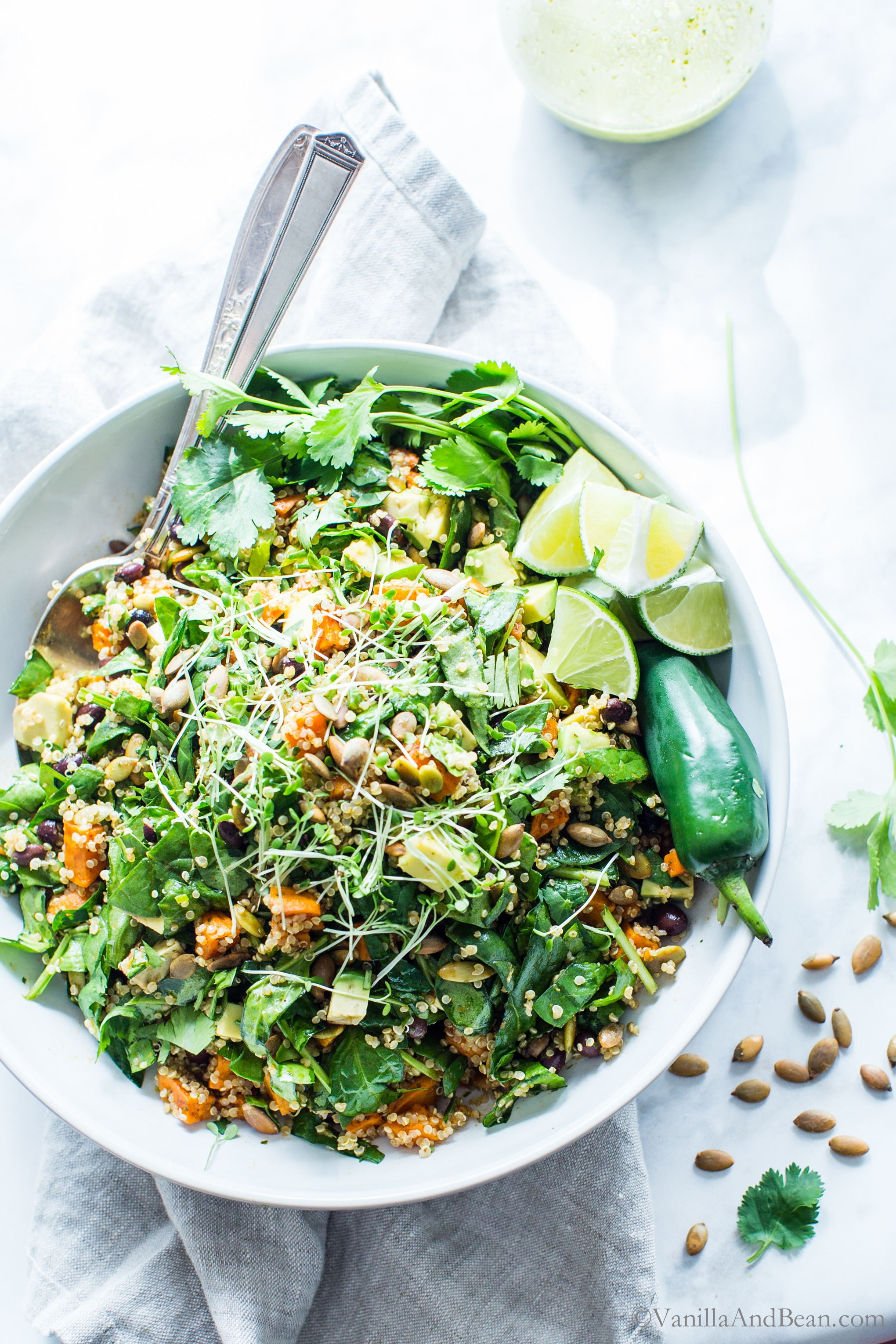 A make-ahead, ready when you are salad, Black Bean Sweet Potato Quinoa Salad with Smoky Pepitas and Roasted Jalapeño Lime Dressing; a Southwestern style salad with all the Mexican flavors, yet not too spicy. vegan + gluten free