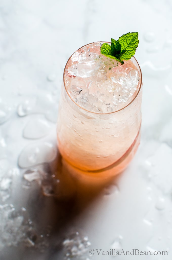 Icy rhubarb soda with a mint garnish.