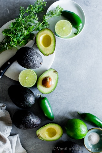 Complex taste with simple ingredients, smoky Charred Jalapeño-Lime Guacamole is fabulous as a snack or appetizer. Schmear on tacos or toast, or dollop on your favorite Mexican inspired soup or enchiladas! vegan + gluten free.