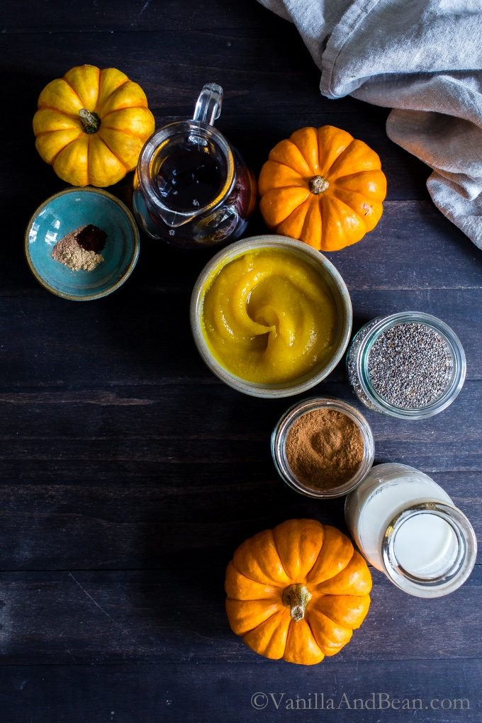 Overhead shot of ingredients for Pumpkin and Spice Chia Pudding.