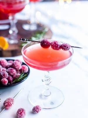 Gin and Cranberry juice cocktail garnished with sugared cranberries ready for sharing.