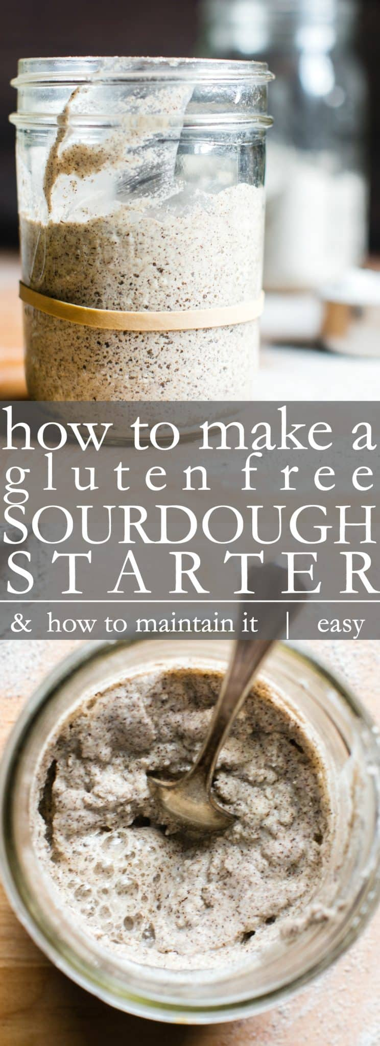 Making a gluten free sourdough starter couldn't be easier. Start with a few simple ingredients, a little time and patience, soon you'll be making delicious homemade gluten free sourdough bread, pancakes, and waffles! #Glutenfreesourdoughbread #GlutenFreeSourdough #SourdoughStarter #GlutenFreeSourdoughStarter